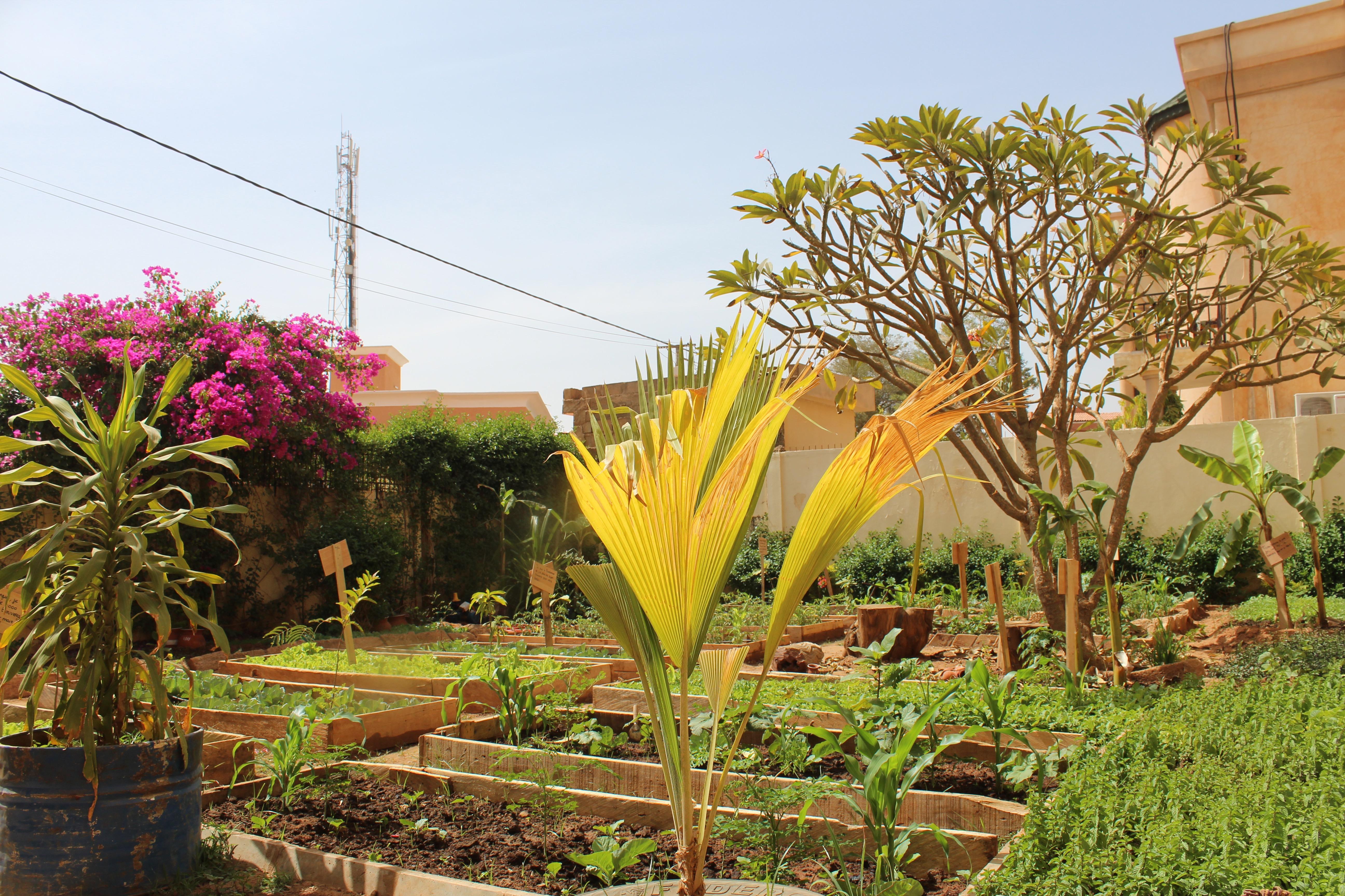 Oasis Jardin Empow Her